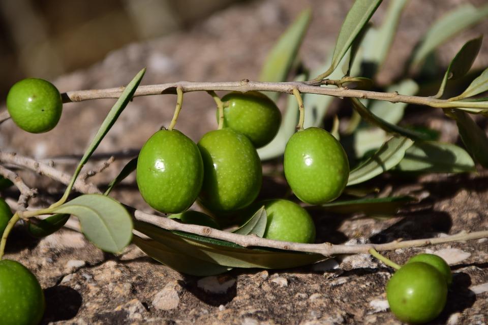 Come Preparare Salsa con Olive